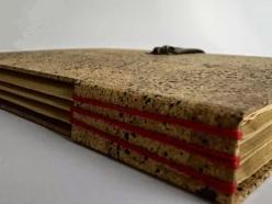 El libro de cuentas del viejo Fonseca